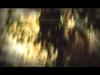 Shinedown - Lady So Divine (short edit)