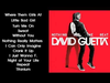 David Guetta - Nothing But The Beat (sampler)