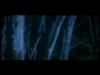 Gyroscope - Beware Wolf
