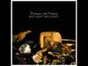 Florence + The Machine - No Light, No Light (Breakage Remix)