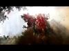 Gojira - Explosia (with Lyrics)