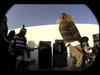 Fu Manchu - live - 1993 - snakebellies - Huntington Beach, Ca - electric chair.