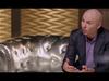 #Certified, Pt. 2: Pitbull On Making s