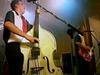The Firebirds - Rockabilly Man