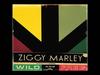 Ziggy Marley - Changes (feat. Daniel Marley | Wild and Free)