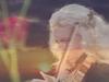 Piotr Ilyich Tchaikovsky - Tchaikovsky: Souvenir de Florence for String Orchestra Op.70 - (1) Allegro con spirito