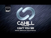 Cahill - Can't You See (Sonny Wharton Vocal Remix) (feat. Chrom3)