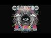 Gogol Bordello - Immigraniada (Bassnectar Remix) (FULL OFFICIAL)