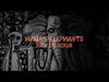 Mother Mother - Waxing Elephants' Ep 1: Chicken, Voice, Nuts.