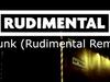 Ed Sheeran - Drunk (Rudimental Remix) (Official)