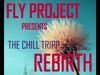Fly Project - Rebirth