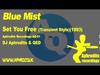 Blue Mist - Set You Free (Transient Style) (1993) (feat. Aphrodite)