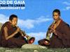 Banco De Gaia - Last Train to Lhasa (Silinder Remix)