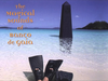 Banco de Gaia - I Love Baby Cheesy (Radio Edit)
