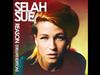 Selah Sue - Falling Out (Pomrad Remix)