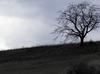 George Frideric Handel - K&K Impressions (feat. Handel: Saul, HWV 53: Largo for Lute)