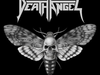 Death Angel - THE MOTH (From The New Album - The Evil Divide)