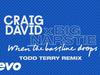 Craig David x Big Narstie - When the Bassline Drops (Todd Terry Remix) (Audio)