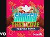 Shaggy - That Love (Tropixx Remix) (Audio)