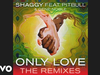 Shaggy - Only Love (Bad Royale Remix) (Audio) (feat. Pitbull, Gene Noble)