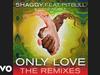 Shaggy - Only Love (Mickey Humphrey Remix) (Audio) (feat. Pitbull, Gene Noble)