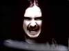CARCASS - No Love Lost