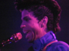 Prince & The New Power Generation - Live 4 Love