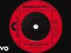 Roger Daltrey - As Long As I Have You (Visualiser)