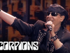 Scorpions - The Zoo (Live At Hellfest, 20.06.2015)