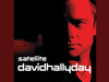 David Hallyday - My Sharona