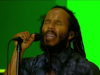 Ziggy Marley – High On Life | Live at Exit Festival (2018)