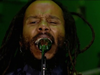 Ziggy Marley – See Dem Fake Leaders | Live at Exit Festival (2018)