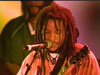 Stephen Marley - Jah Bless | Ziggy Marley & the Melody Makers LIVE! (2000)