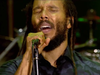 Ziggy Marley – Positive Vibration (Bob Marley cover) | Live at Exit Festival (2018)