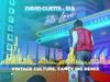 David Guetta & Sia - Let's Love (Vintage Culture, Fancy Inc remix)
