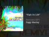 Ziggy Marley - High On Life (RUSL Remix)