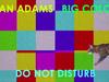 Ryan Adams - Do Not Disturb (Visualizer)